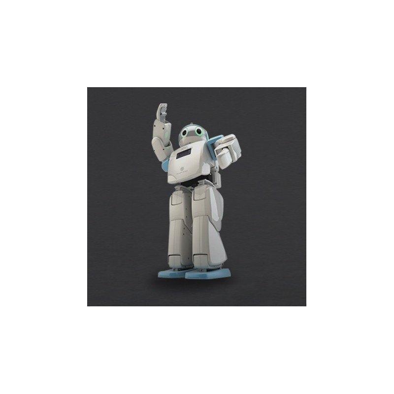 Hovis Eco Plus - humanoid robot 20 DoF