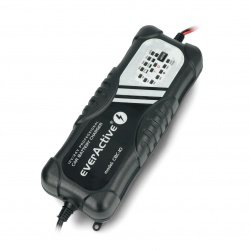 Battery charger, automatic car charger for 12V / 24V EverActive
